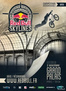 Affiche RB Skylines